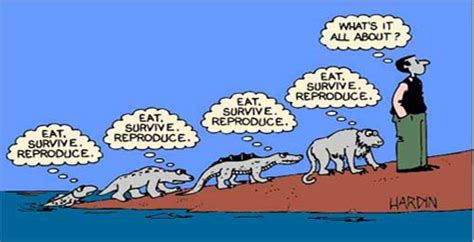 Thesis statement on the theory of evolution